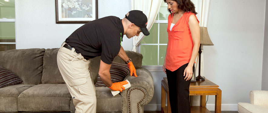 Waynesville, NC carpet upholstery cleaning