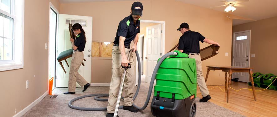Waynesville, NC cleaning services